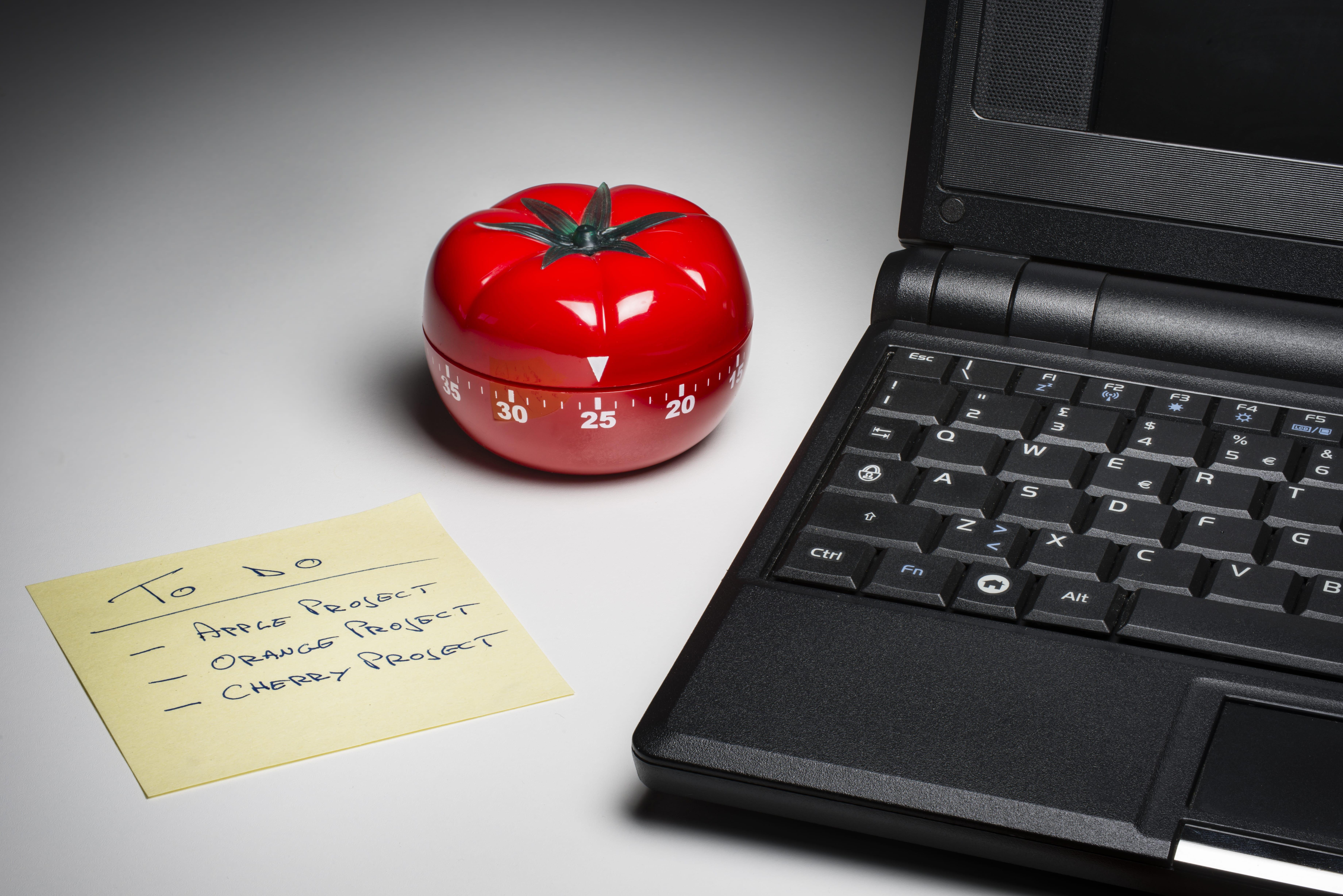 Como Vencer A Procrastinação Prenda A Reprogramar Os Seus Hábitos - Contabilidade Na Zona Leste - SP | BPC Assessoria