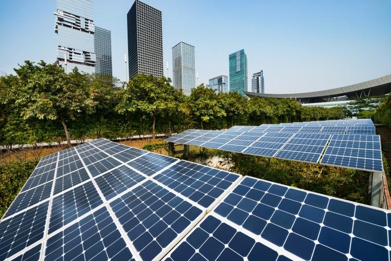 Sustentabilidade Empresarial - Contabilidade Na Zona Leste - SP | BPC Assessoria